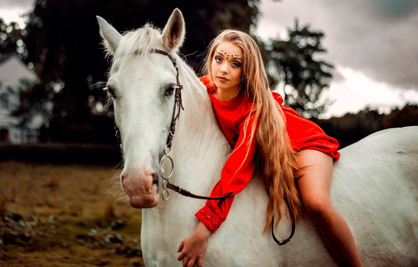 Photo wallpaper girl, pose, horse, portrait, makeup, dress, hairstyle, beauty, rider, in red, bokeh, Carlos, white horse, …