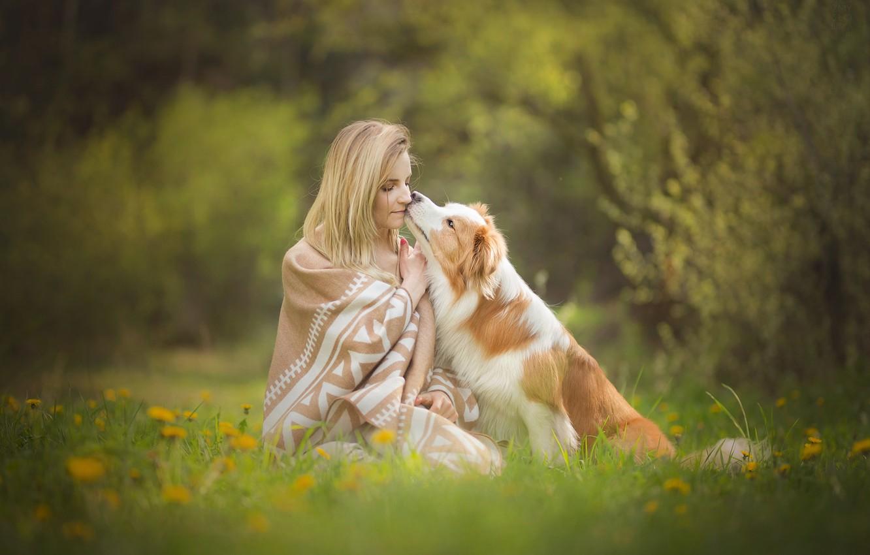 Photo wallpaper grass, girl, flowers, mood, dog, spring, friendship, plaid, dandelions, friends, lawn, bokeh