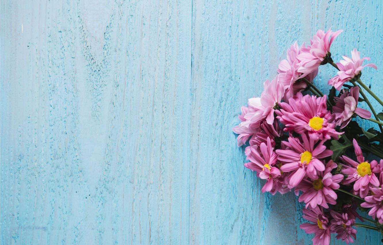 Wallpaper Flowers Background Chrysanthemum Wood Pink Flowers
