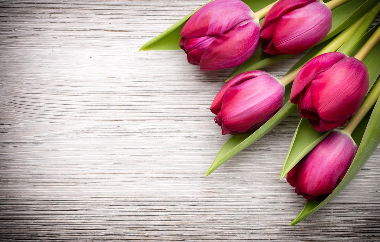 Photo wallpaper flowers, bouquet, fresh, wood, pink, flowers, beautiful, tulips, pink tulips