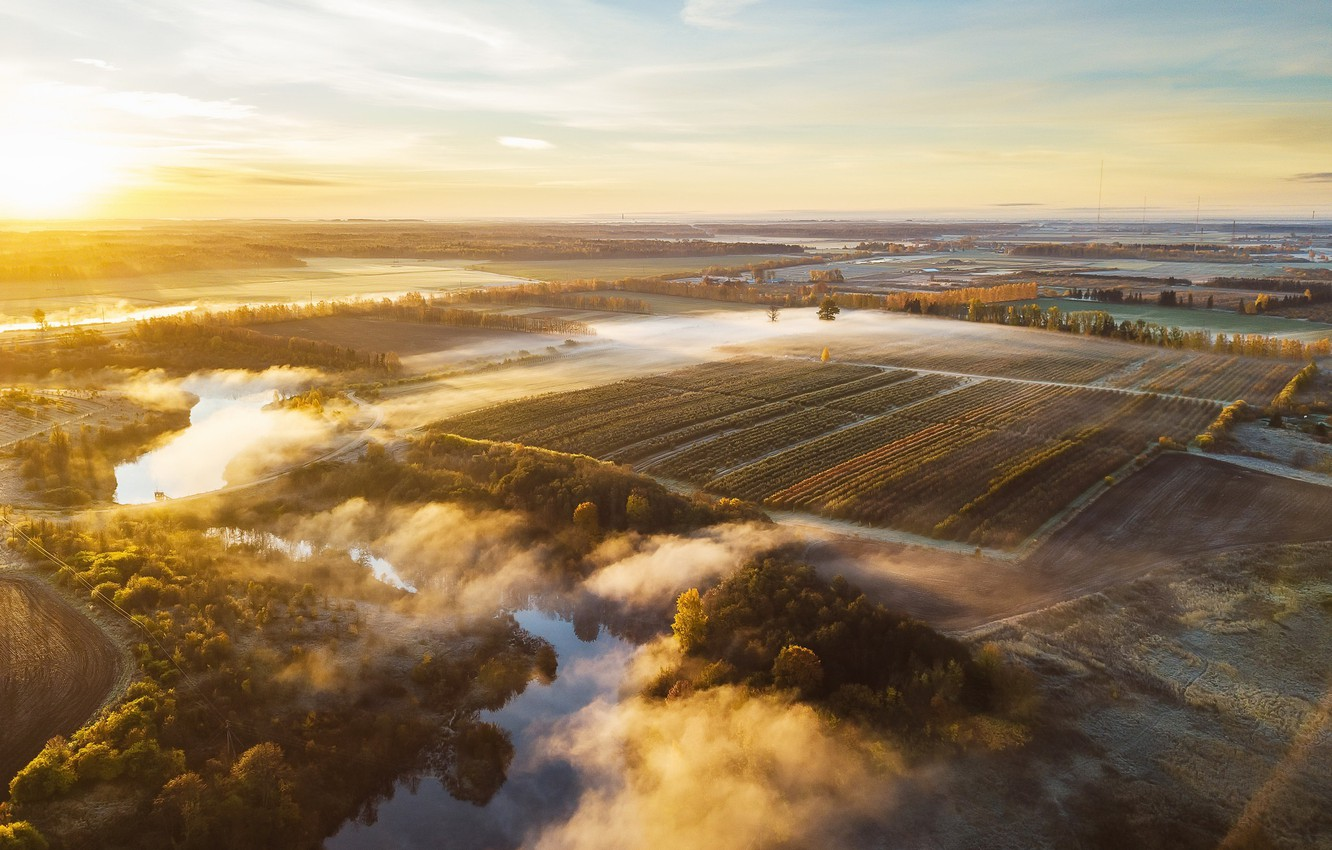 Photo wallpaper field, nature, fog, morning, Lithuania