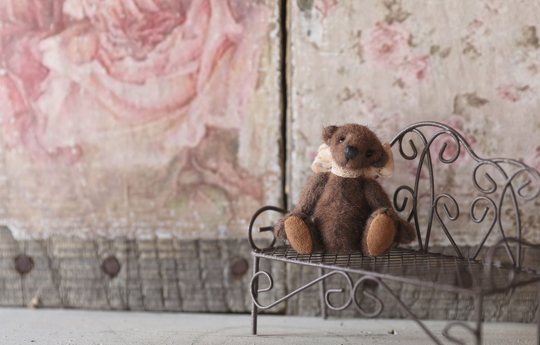 Photo wallpaper bench, mood, toy, shop, bear, Teddy bear