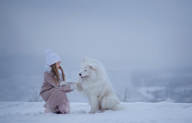 Photo wallpaper winter, snow, dog, girl, friends, Samoyed
