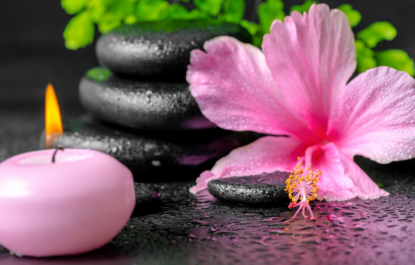 Wallpaper Flowers Spa Background Spa Candles Spa Stones Images For Desktop Section Raznoe Download