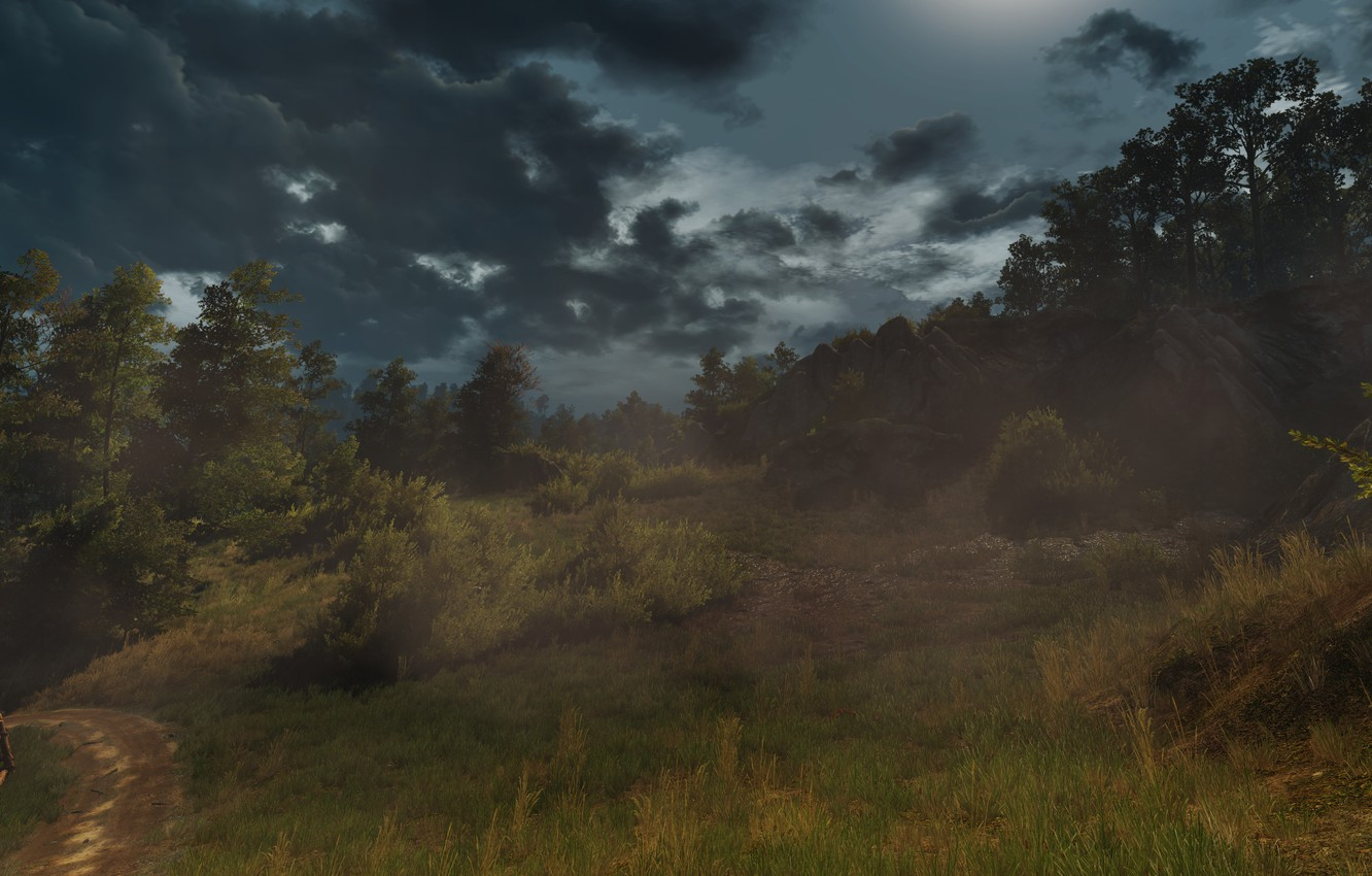 Photo wallpaper Field, Grass, The Witcher, The Witcher, The Witcher 3 Wild Hunt, The Witcher 3 Wild …