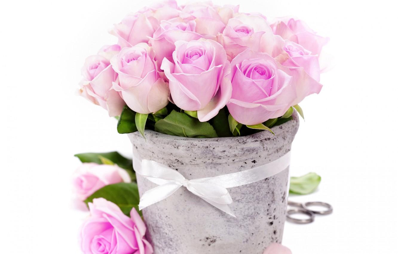 Photo wallpaper roses, bouquet, petals, Bud, tape