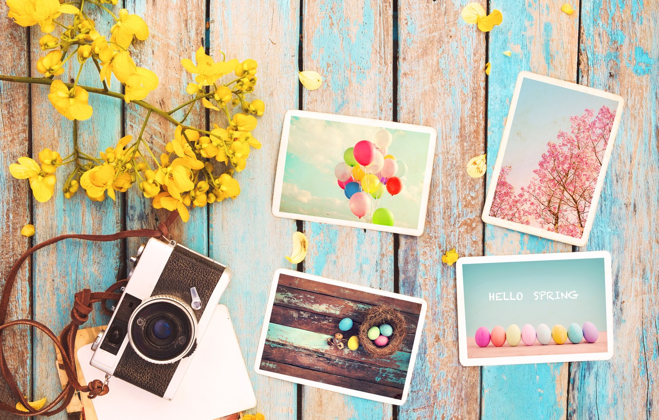 Photo wallpaper flowers, photo, eggs, spring, camera, colorful, Easter, wood, pink, flowers, camera, spring, Easter, eggs, decoration, …