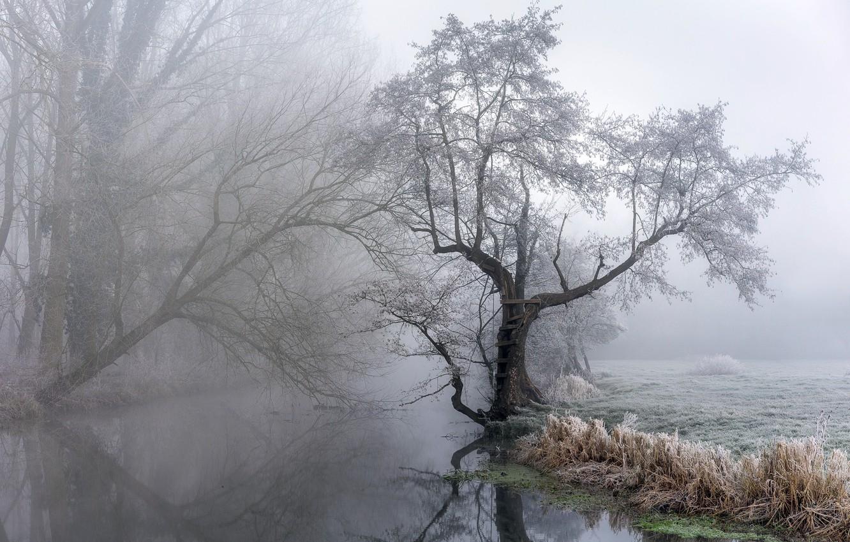 Photo wallpaper nature, fog, river