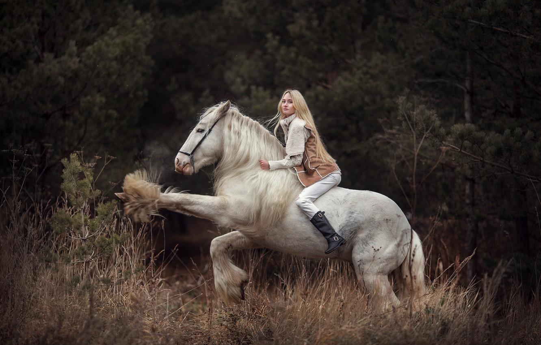 Photo wallpaper girl, horse, blonde, rider