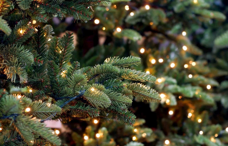 Photo wallpaper New Year, Christmas, merry christmas, decoration, xmas, fir tree