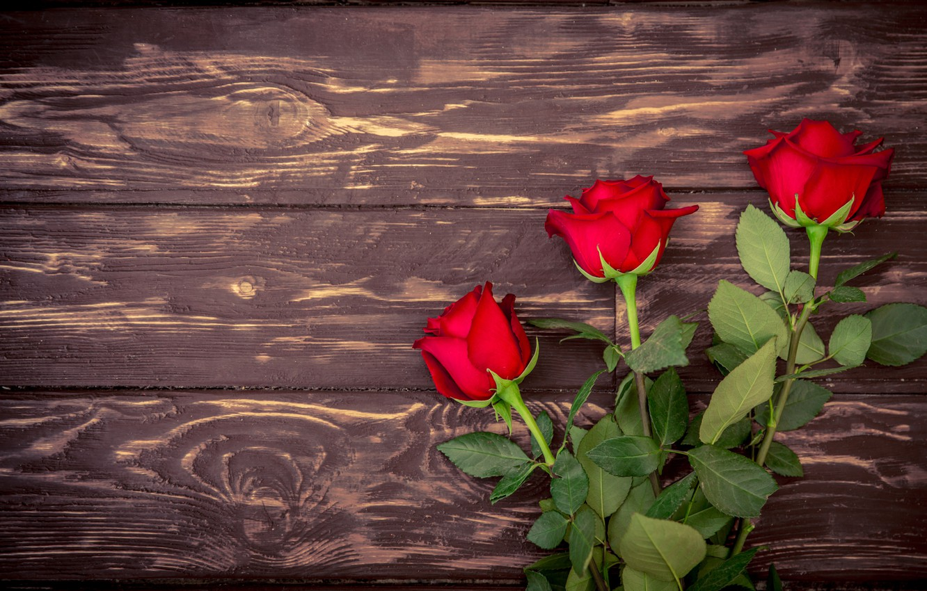 Photo wallpaper bouquet, red, wood, romantic, roses, red roses