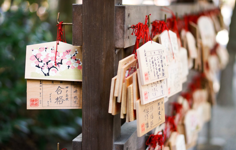 Photo wallpaper tree, desire, Japan, temple, Japan, the gods, amulet, symbols, kami, plate, prayer, the Japanese, Ema, …