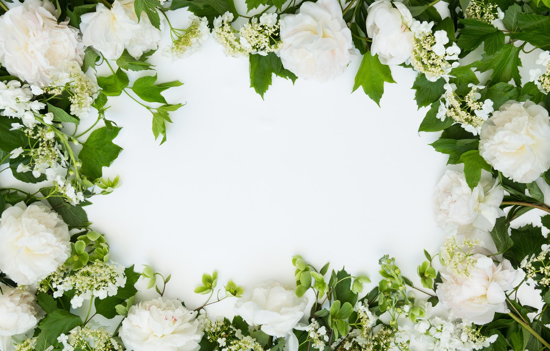 Photo wallpaper flowers, background, bouquet, frame, Flowers, bundle