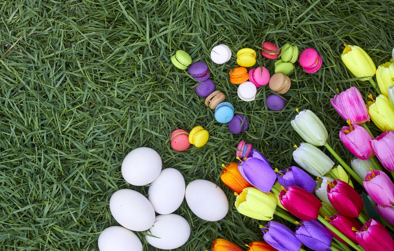 Photo wallpaper grass, flowers, eggs, spring, colorful, Easter, tulips, wood, flowers, tulips, spring, Easter, eggs, decoration, Happy, …