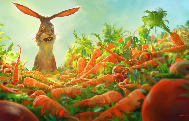 Wallpaper Joy Rabbit Carrots Amazement Watership Down Carrots