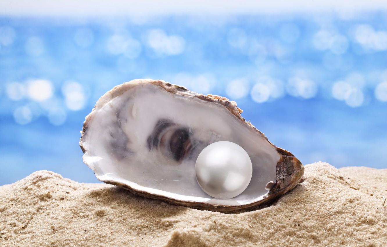 Wallpaper sand, shell, pearl, starfish, sunshine, beach ...