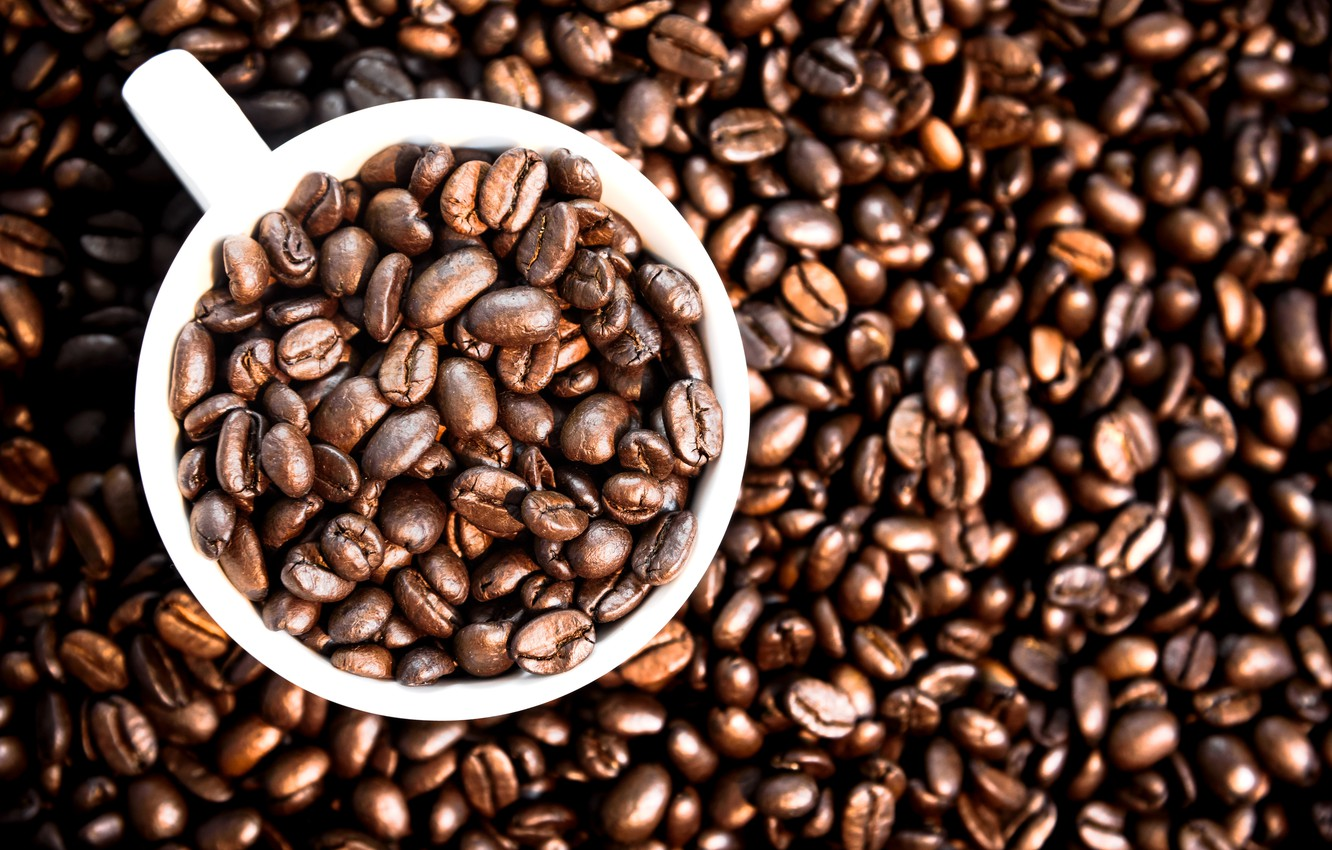 Photo wallpaper background, coffee, grain, Cup, texture, background, cup, beans, coffee, roasted