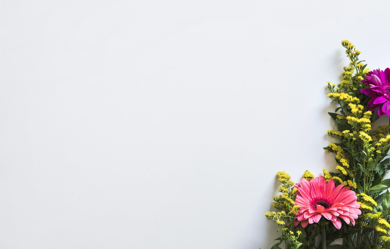 Photo wallpaper Bouquet, Gerbera, Wild flowers