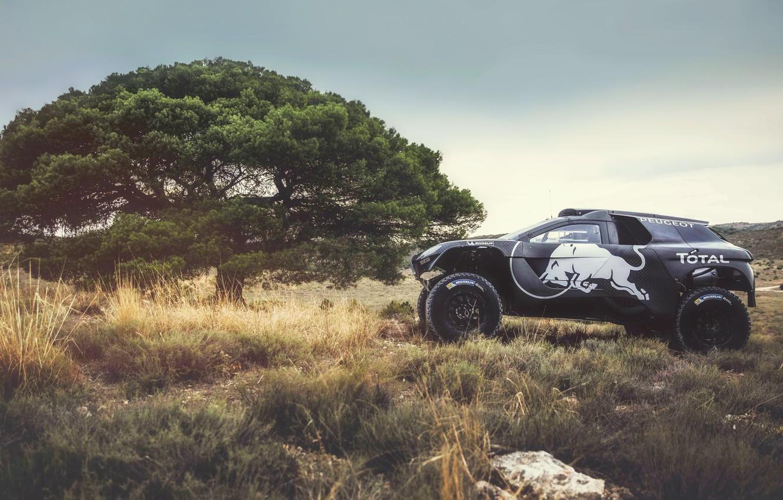 Photo wallpaper Tree, Black, 2008, Machine, Peugeot, Red Bull, Rally, Dakar, SUV, Rally, Sport, The roads, DKR, …