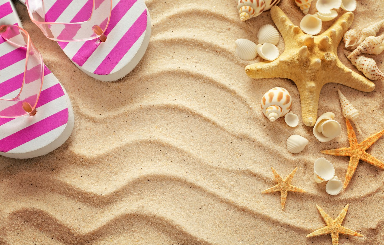 Photo wallpaper sand, beach, summer, stay, shell, summer, beach, vacation, sand, slates, vacation, starfish, seashells