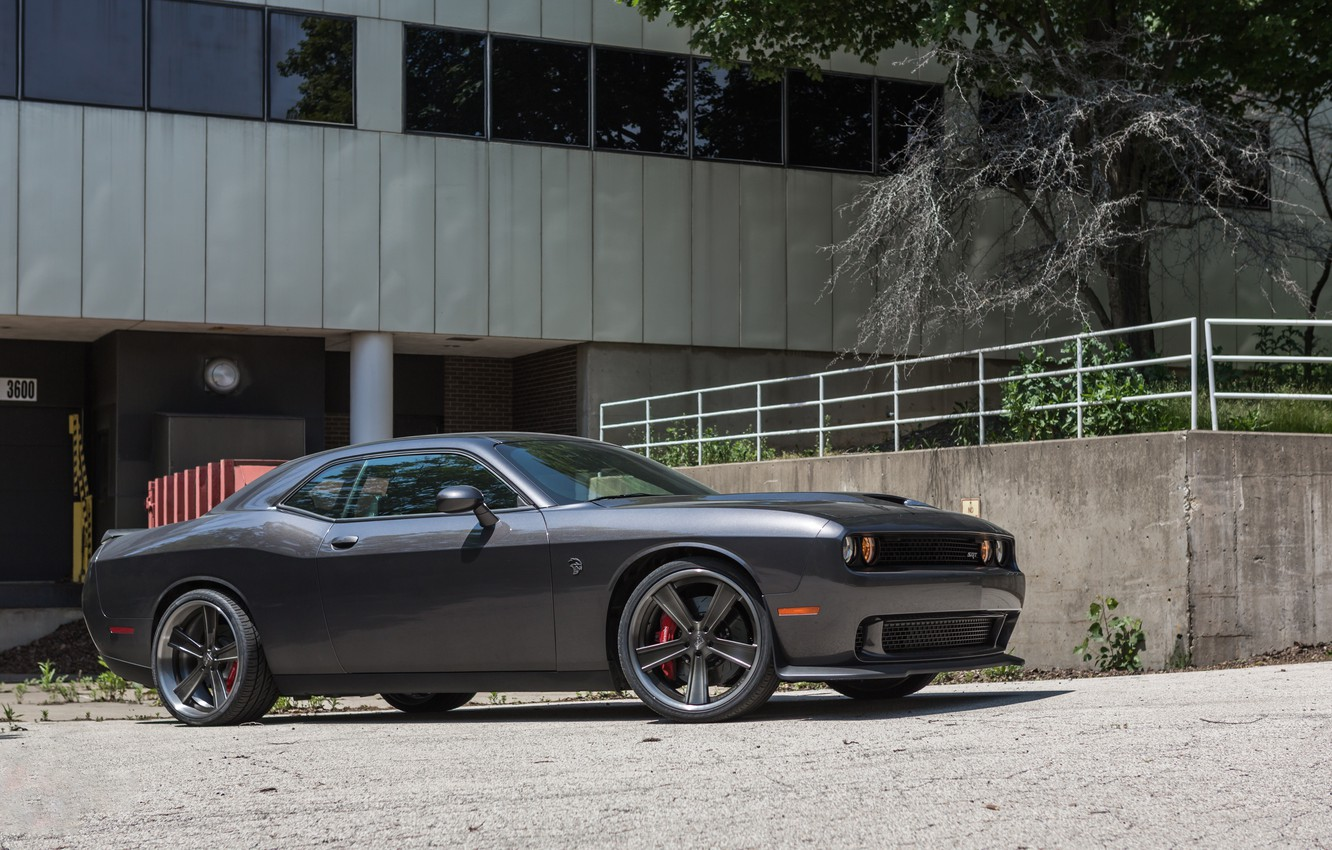 Photo wallpaper dodge, challenger, gray, hellcat