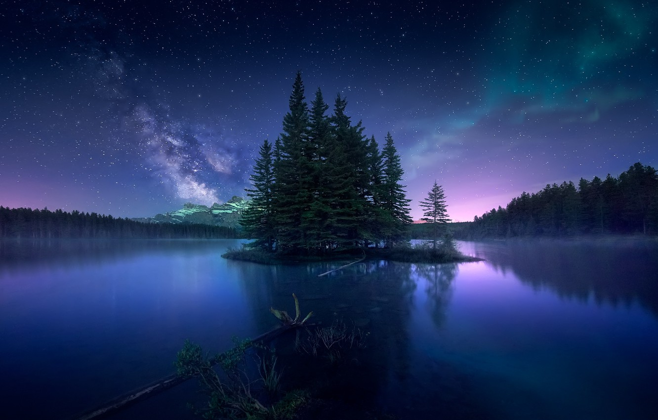 Photo wallpaper forest, the sky, night, Northern lights, Canada