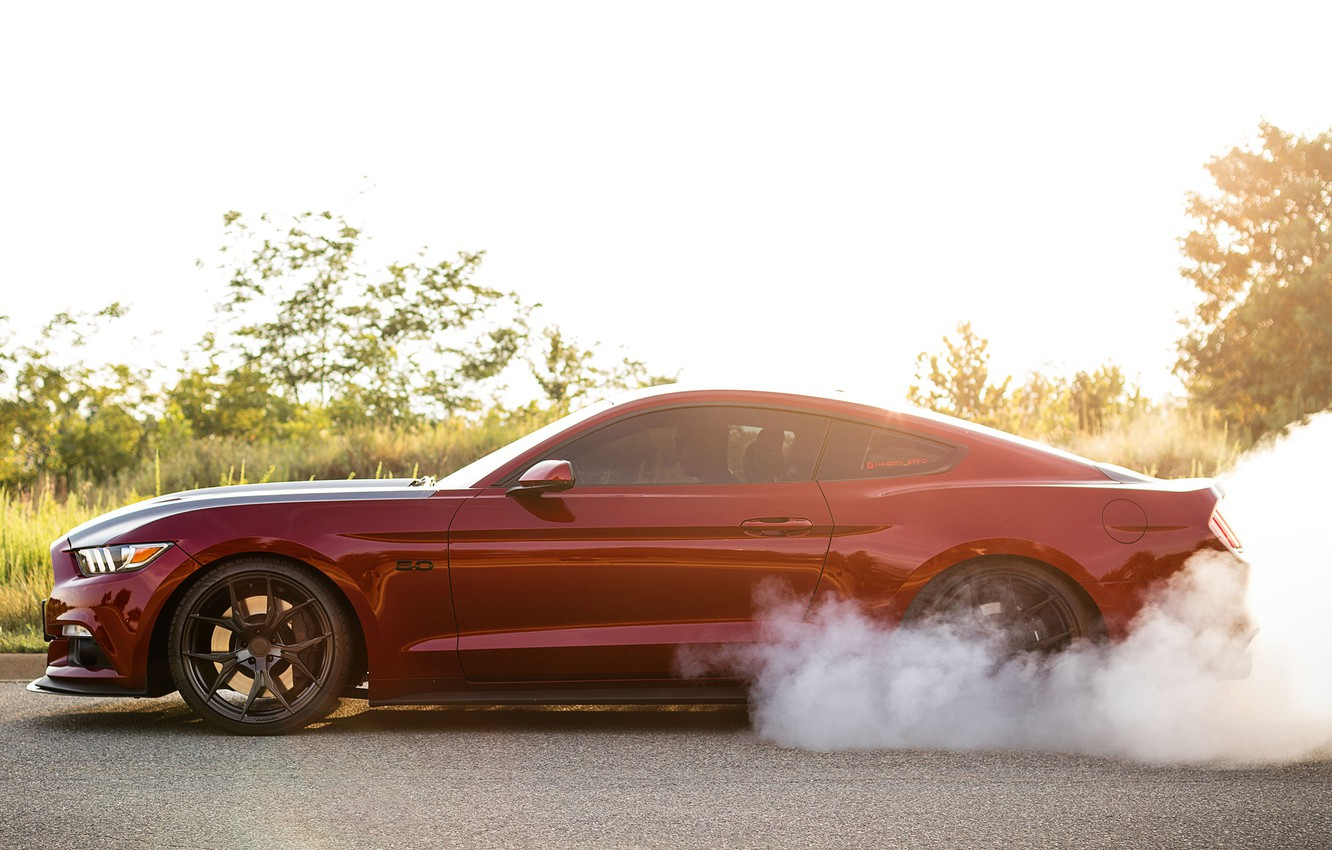Photo wallpaper Mustang, Ford, Speed, Smoke, Muscle car, Road