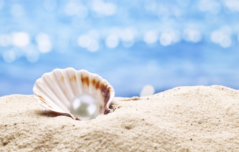 Wallpaper shell, pearl, sunshine, beach, sea, sand ...