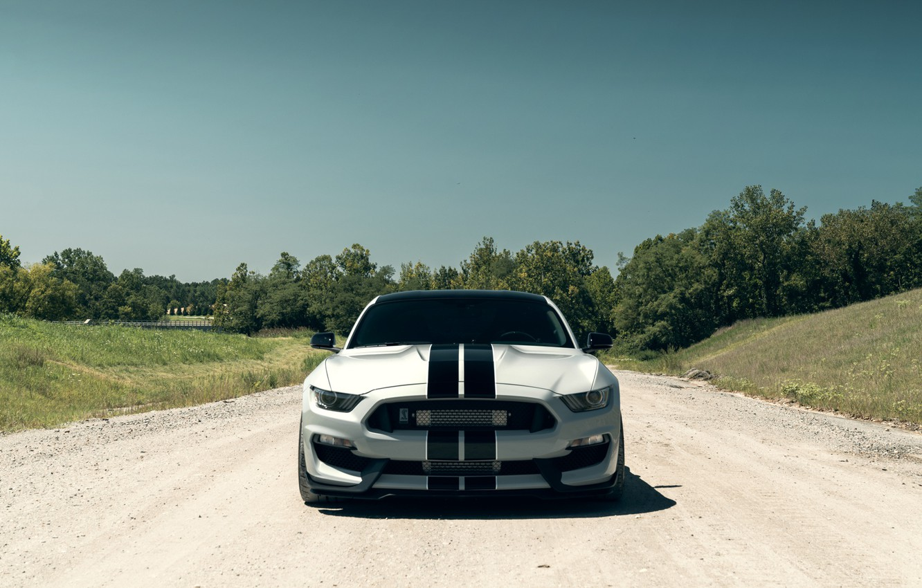 Photo wallpaper Mustang, Ford, Shelby, Front, Silver