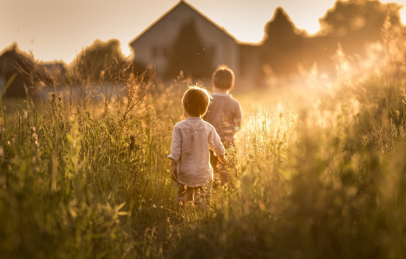 Wallpaper Summer The Sun Children Sunny Days Came Images