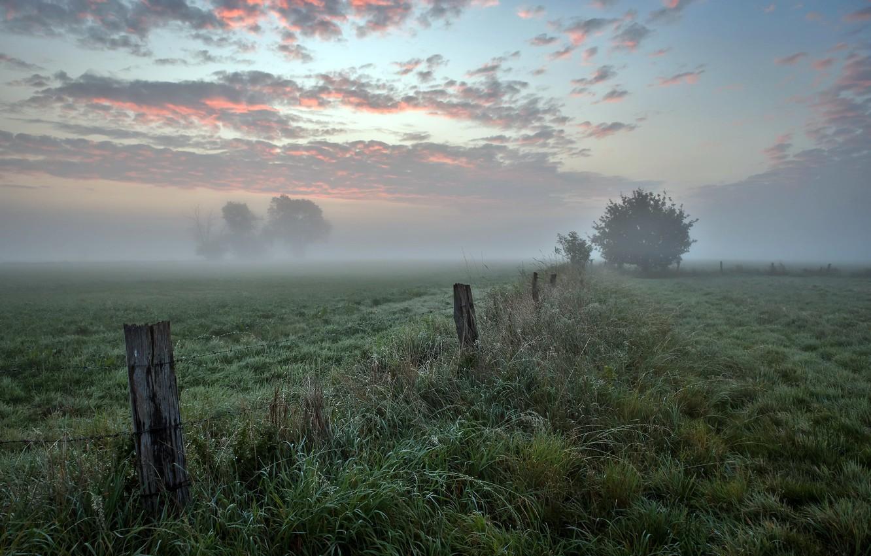 Photo wallpaper field, autumn, fog, the fence