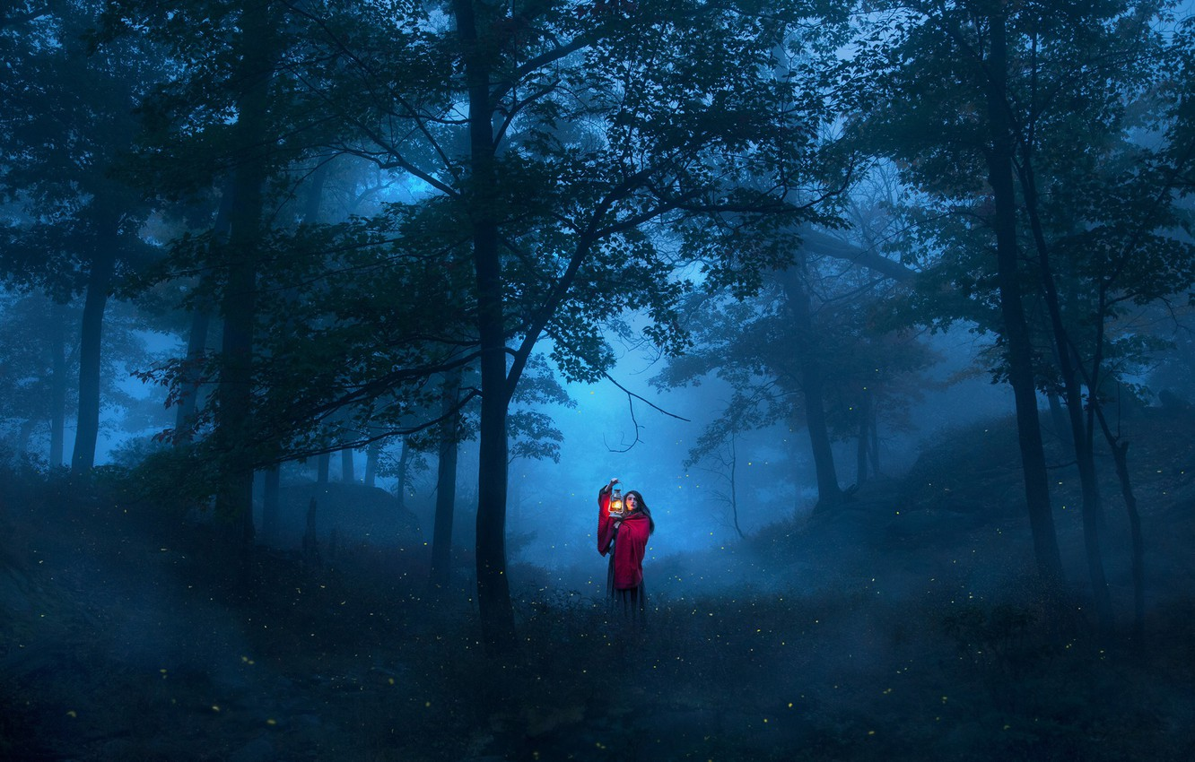 Photo wallpaper forest, girl, trees, night, the situation, lantern