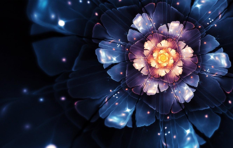 Photo wallpaper flower, vector, computer graphics, flora, Chiara Biancheri, creative design