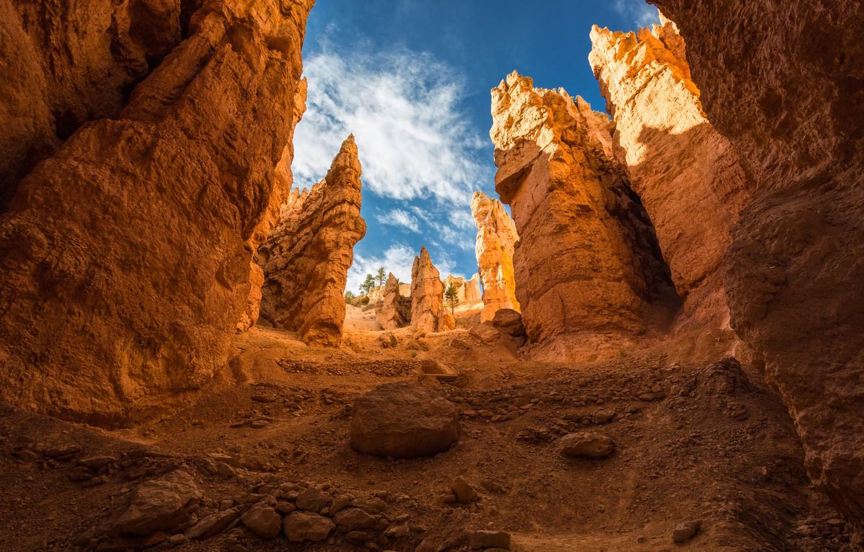 Photo wallpaper mountains, rocks, gorge, Utah, USA, Bryce Canyon, national Park