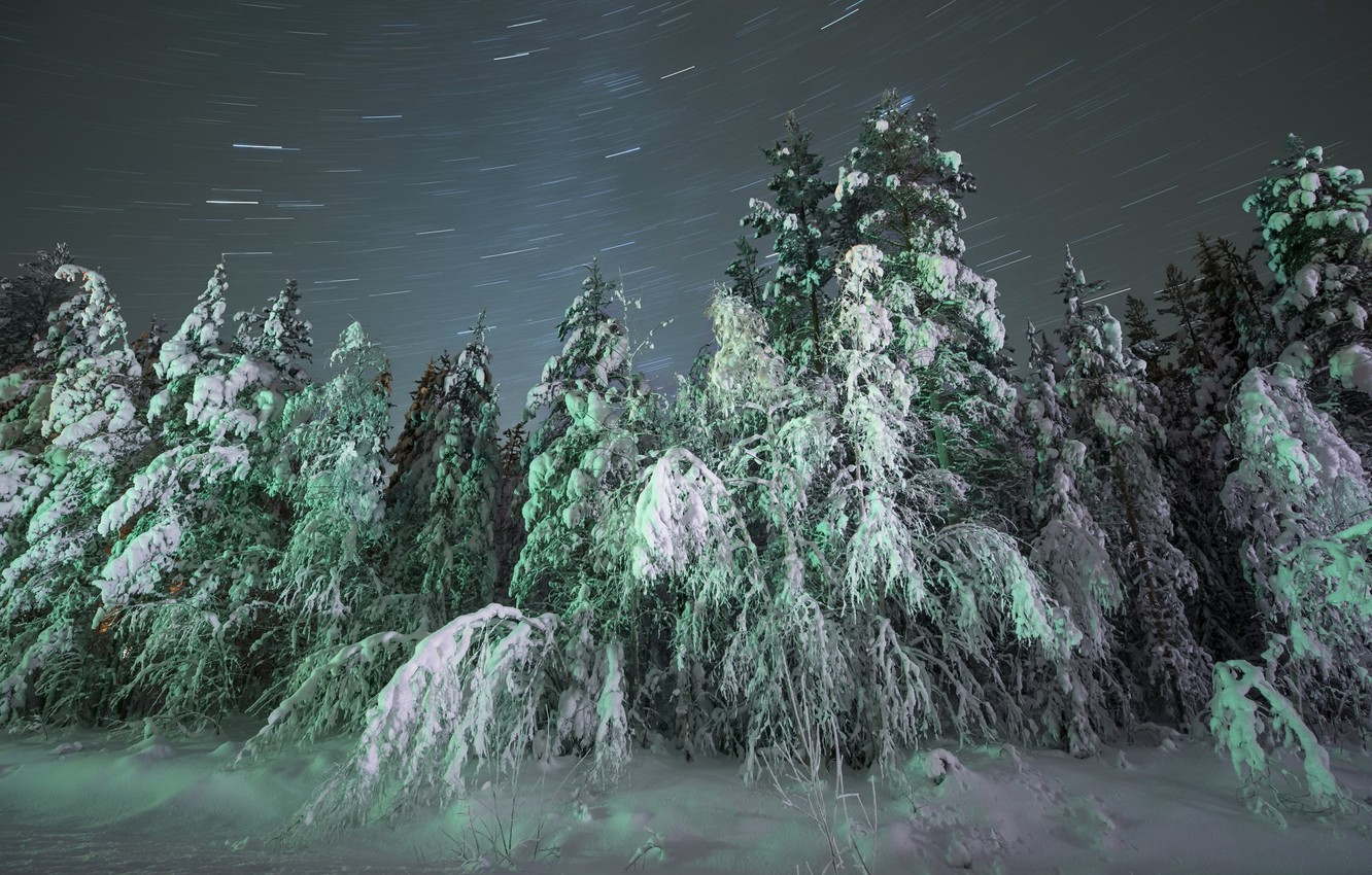 Wallpaper Winter Snow Night Nature Blizzard Images For