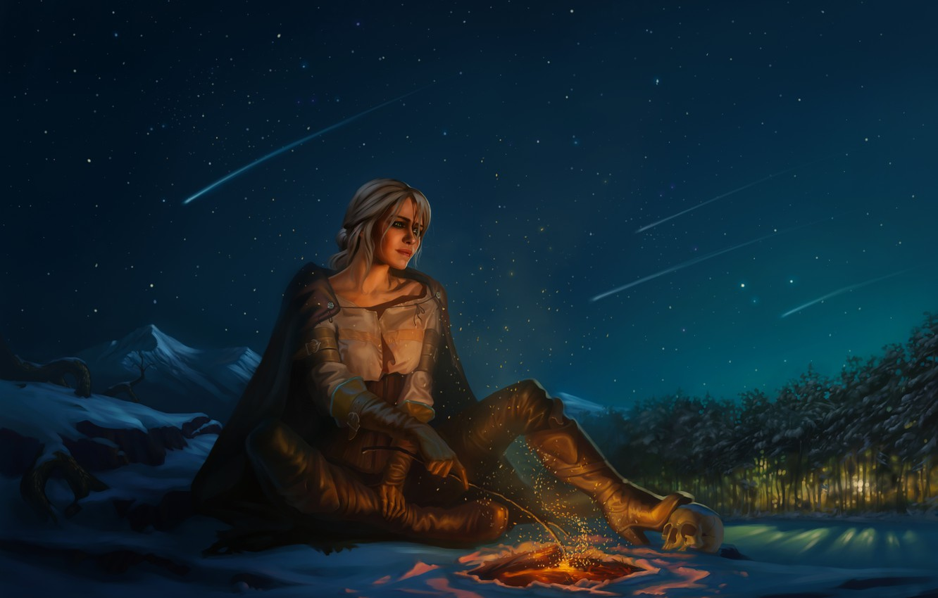 Photo wallpaper forest, the sky, girl, snow, trees, mountains, night, skull, the fire, the Witcher, Starfall, The …