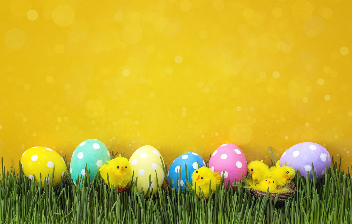 Photo wallpaper grass, chickens, spring, Easter, wood, spring, Easter, eggs, decoration, Happy, the painted eggs
