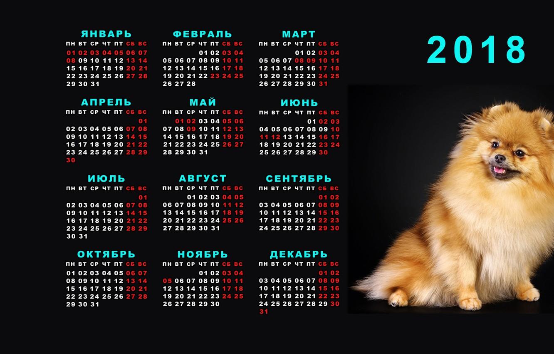 Wallpaper New Year Calendar 2018 Spitz Images For Desktop