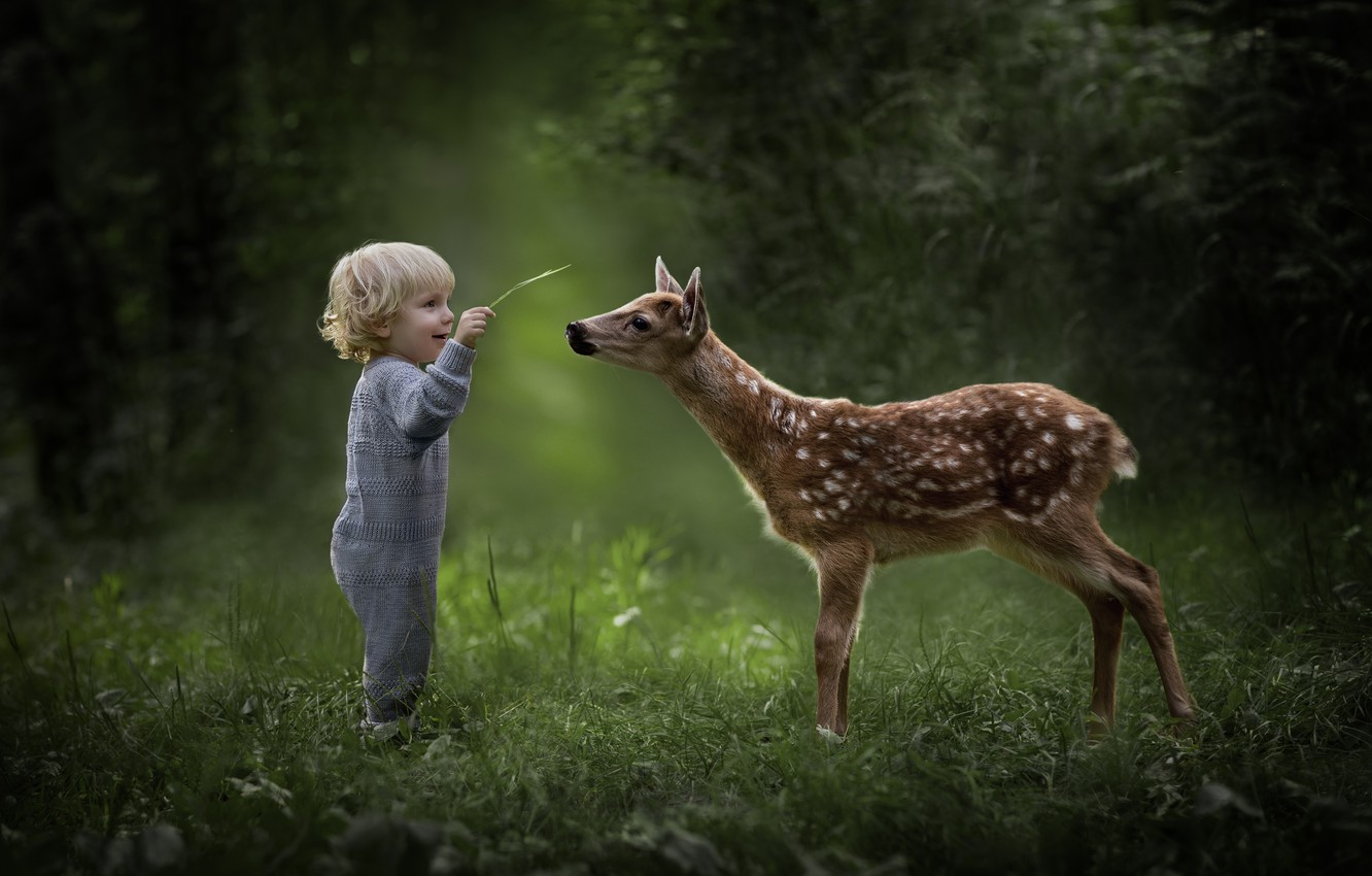 Photo wallpaper nature, child, boy, deer, cute, friends