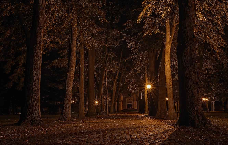 Photo wallpaper Landscape, Czech republic, Alley at night