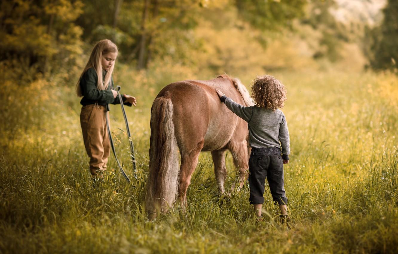 Photo wallpaper summer, nature, children, childhood, mood, horse, boy, village, meadow, friendship, girl, pony, curly, former, kids, …
