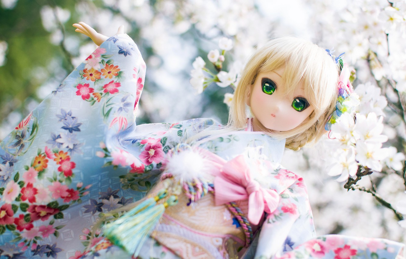 Photo wallpaper toy, Doll, outfit