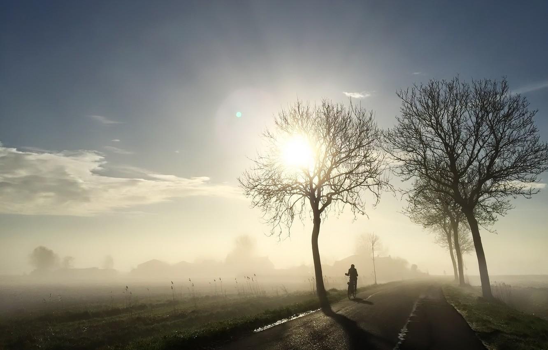 Photo wallpaper road, light, bike, fog, morning