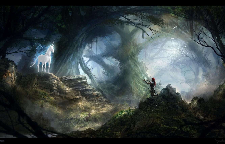 Photo wallpaper forest, stones, woman, meeting, unicorn, call, UNICORN