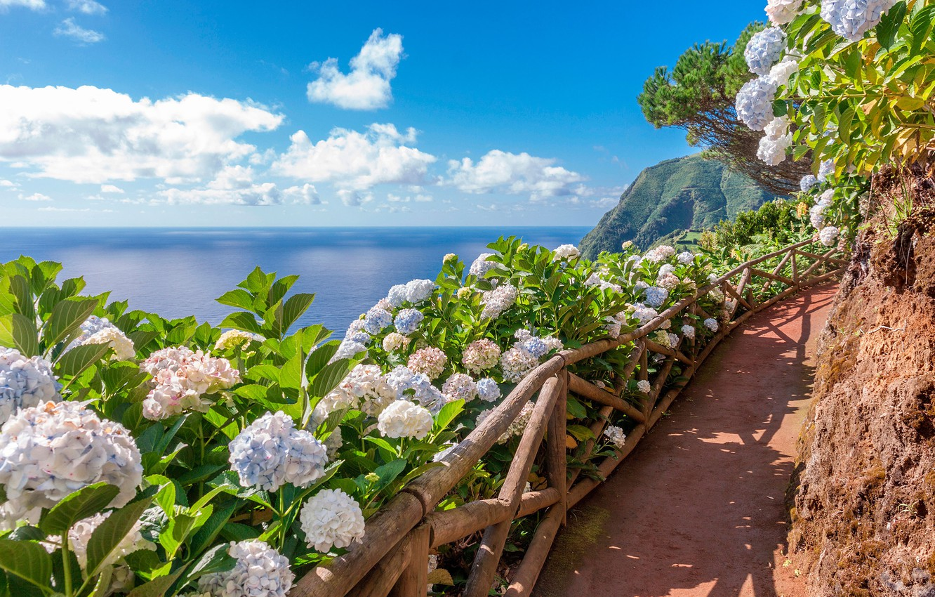Photo wallpaper flowers, mountains, the ocean, track, Azores, Sao-Miguel, Acores