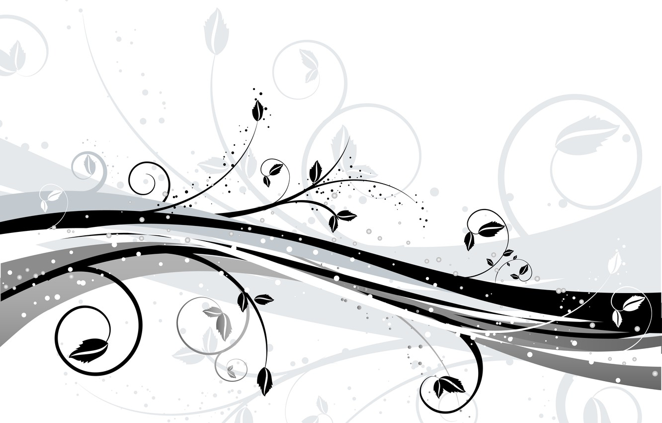 Wallpaper Flowers Abstraction Background Texture White Black