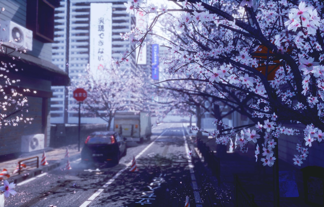 Wallpaper Auto The City Spring Sakura Images For Desktop Section