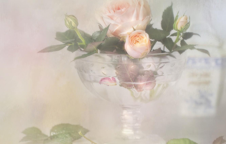 Photo wallpaper style, tenderness, rose, Bud, vase