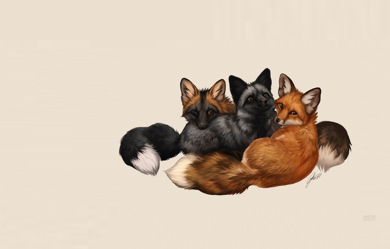 Photo wallpaper Fox, children's, Johanna Tarkela, Fox Trio