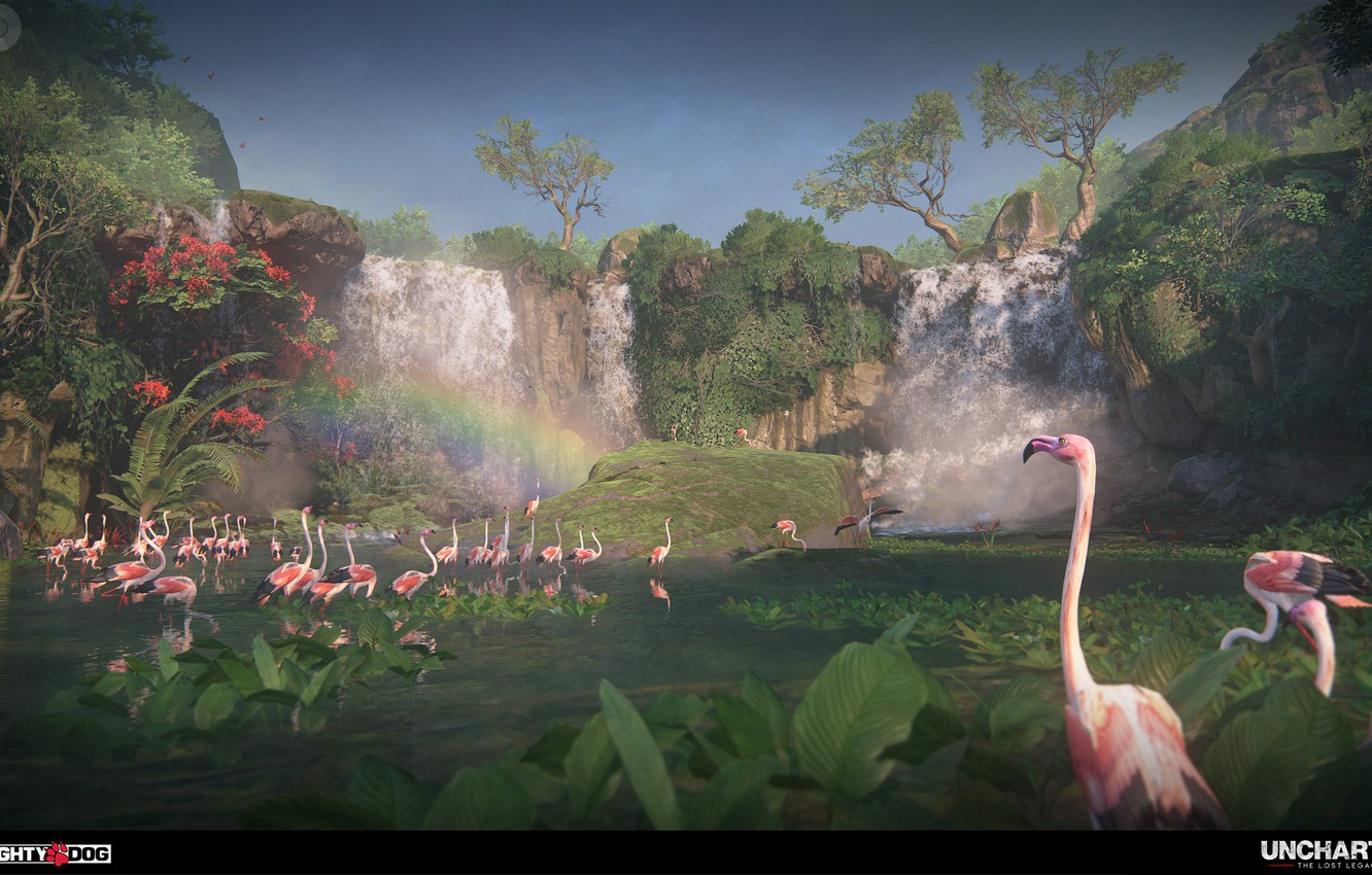 Wallpaper Vegetation Waterfall Flamingo Uncharted The Lost
